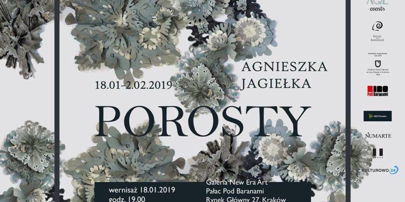 Porosty - Agnieszka Jagiełka